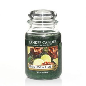 Pinecone & Lime Large Jar Candle