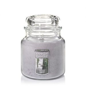 Silver Birch Medium Jar Candles