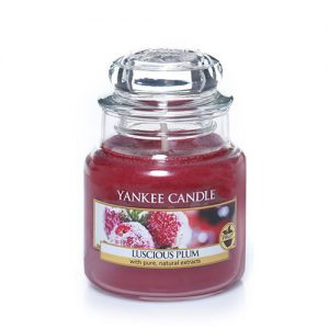 Luscious Plum Small Jar Candle