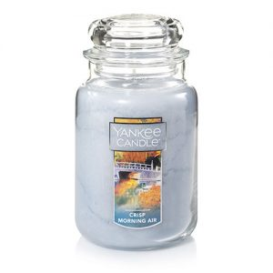 Crisp Morning Air Large Jar Candle