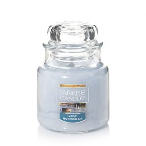 Crisp Morning Air Small Jar Candle